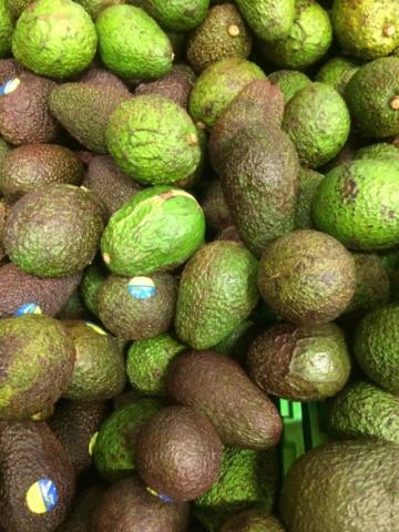 Fresh Fruit & Vegetables Gallery - Avocado