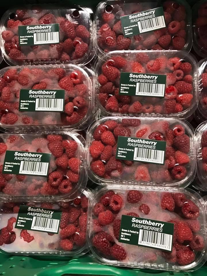 Fresh Fruit & Vegetables Gallery - Strawberries