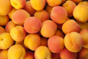 Fruit & Veg Specials - Stemilt Apricots