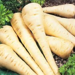 Fruit & Veg Specials - Parsnip