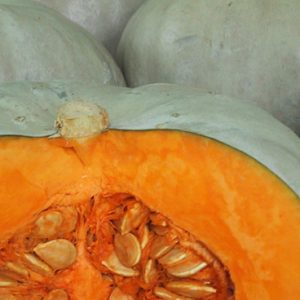Fruit & Veg Specials - Pumpkin